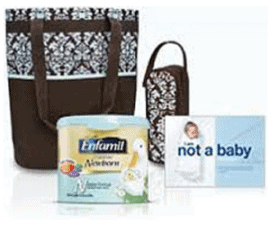 Pregnancy Freebies - Free Enfamil Diaper Tote - $250 value